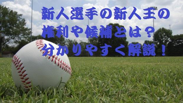 プロ野球 新人王 新人選手 権利 候補 分かりやすく 解説